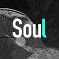 soul电脑版