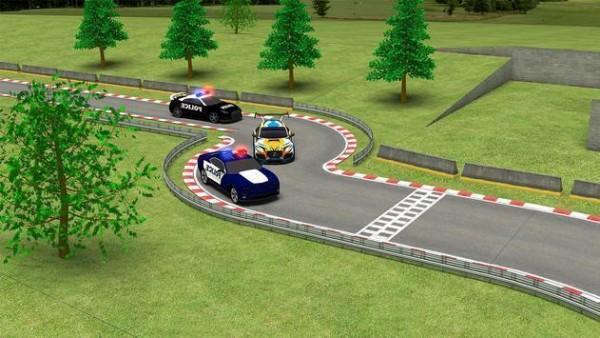 警察犯罪赛车(图1)